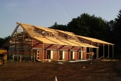 Peterson-Framing-Roof
